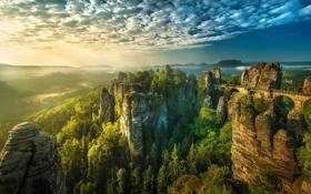 Картинка природа, лес, мост, скалы, деревья