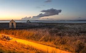 Обои grass, road, sunset, cloud