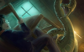 Обои стул, змей, битва, Harry Potter, fanart