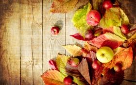 Обои осень, яблоки, доски, зеленые, красные, листики