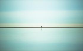 Картинка Coast, sea, The One, street