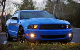 Обои Mustang, Ford, мустанг, 2012, форд