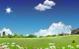 Обои Мельницы, дома, природа, бабочка, небо, цветы
