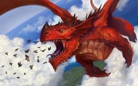 Картинка небо, облака, птицы, красный, дракон, арт, пасть