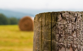 Картинка поле, простор, сено, деревянный, жатва, столбик, конец лета