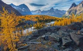 Картинка yoho, камни, осень, скалы, река, облака, лес