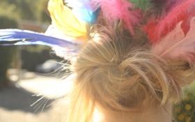 Картинка волосы, цветные, перья, блондинка, пучок