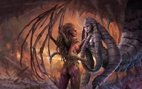 Обои девушки, крылья, руины, starcraft 2, fanart, Kerrigan, queen of blades