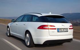 Картинка car, Jaguar, white, road, speed, Sportbrake