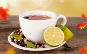 Обои листья, чай, горячий, ложка, чашка, лайм, блюдце