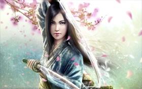 Картинка катана, сакура, брюнетка, Mario Wibisono, кимоно, мечи, mirumoto kei