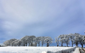 Картинка зима, дорога, поле