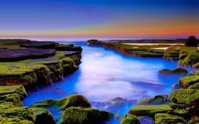 Картинка море, закат, камни, мох