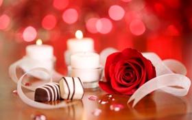 Картинка роза, еда, шоколад, свечи, конфеты, красная, сладкое