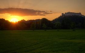 Картинка зелень, трава, солнце, деревья, закат, парк, замок