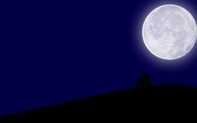 Обои грусть, ночь, луна