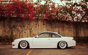 Обои цветы, стена, тюнинг, профиль, белая, Silvia, Nissan