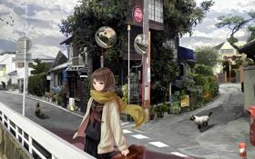 Картинка девушка, кошки, город, улица, аниме, чемодан, art