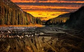 Обои Neverland, горы, by IvanAndreevich, дерево