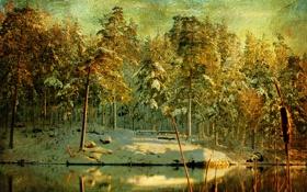 Картинка зима, лес, снег, деревья, река, холст