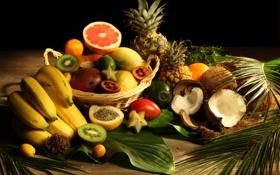 Обои листья, кокос, киви, бананы, фрукты, ананас, грейпфрут