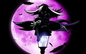 Обои ночь, луна, аниме, перья, девочка, фонарь