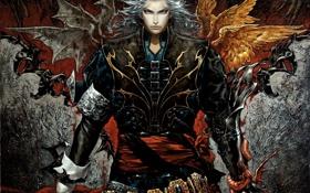 Картинка змея, крылья, арт, мужчина, белые волосы, castlevania, hector