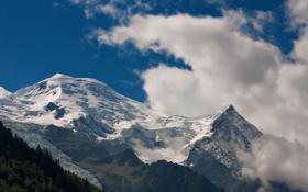 Обои лес, облака, горы, природа