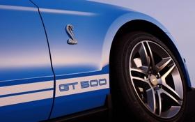 Обои синий, надпись, mustang, мустанг, эмблема, кобра, ford