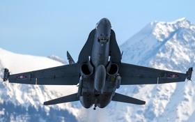 Обои FA-18E, самолёт, оружие