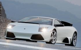 Картинка авто, Lamborghini, серебристый, auto, ламборджини, murcielago, красавец