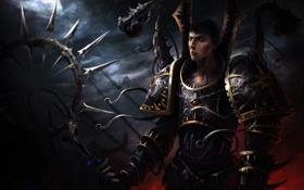 Картинка череп, арт, броня, мужчина, Warhammer, тучи, посох