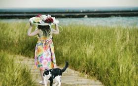 Обои поле, трава, кот, шляпа, ребёнок