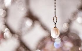 Обои фокус, кулон, украшение, цепочка, подвеска, жемчужина, бусинка