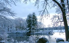 Картинка снег, камни, Деревья, водоем
