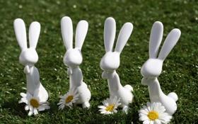 Обои ромашки, зайцы, фигуры