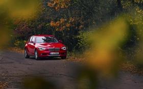 Картинка осень, BMW, БМВ, red, F20, 118D