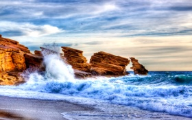 Обои waves, bird, water, rocks, sand, stones, Sea