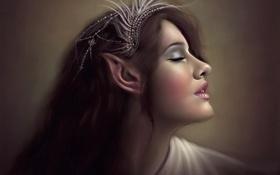 Картинка эльф, арт, профиль, эльфийка, уши