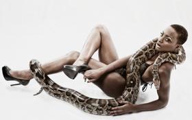 Картинка змея, Model, Vanessa