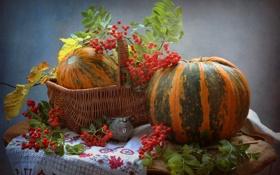 Обои осень, тыква, натюрморт, овощи, рябина, фигурка, мышонок