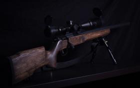 Картинка оружие, винтовка, снайперская, Savage Mk II, FV-SR