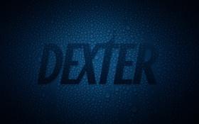 Обои Darkly Dreaming Dexter, iNicKeoN, капли, декстер