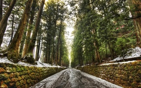 Обои природа, улица, пейзажи, дороги, улицы, парки
