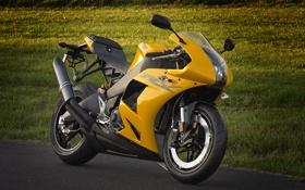 Обои желтый, мотоцикл, суперспорт, вид спереди, bike, yellow, EBR