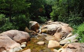 Обои природа, ручей, камни