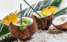 Обои кокос, коктейль, напиток