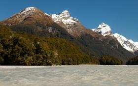 Обои леса, берег, Wakatipu, горы, озеро, Новая Зеландия