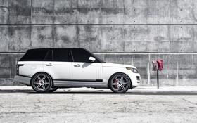 Обои белый, профиль, white, land rover, range rover, ренж ровер, ленд ровер