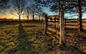 Обои закат, забор, деревья